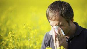 Alergi : bersin bersin